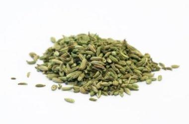 Impariamo a conoscere e utilizzare l'anice verde in cucina e in fitoterapia