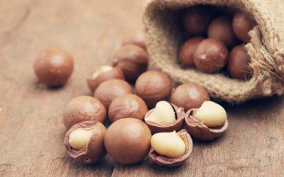 Quello che c'è da sapere sulle noci di Macadamia, un alimento dalle proprietà interessanti che non tutti conoscono