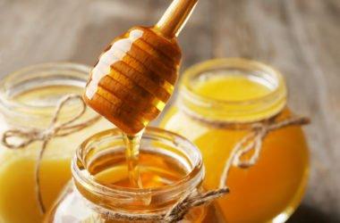 Miele di sulla: tutto su questo alimento dolce e sano, tipico del nostro Paese