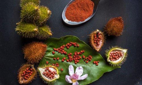 Photo of Conoscete i semi di annatto? Ricavati dall'achiote, sono una spezia e un colorante per gli alimenti e i tessuti