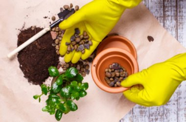 Argilla espansa per giardinaggio ed edilizia: ecco quello che c'è da sapere