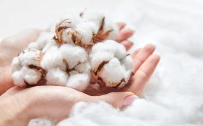 Guida alle proprietà e ai vantaggi del cotone, una fibra naturale fra le più diffuse