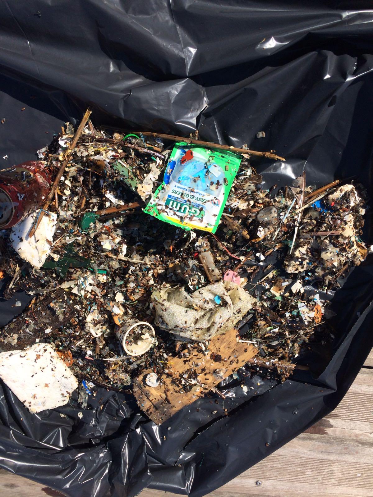 Seabin - LifeGate PlasticLess