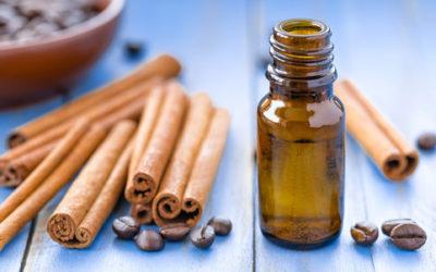 Tutto sull'olio di cannella, ricco di proprietà, può profumare l'ambiente ed essere aggiunto ai dolci