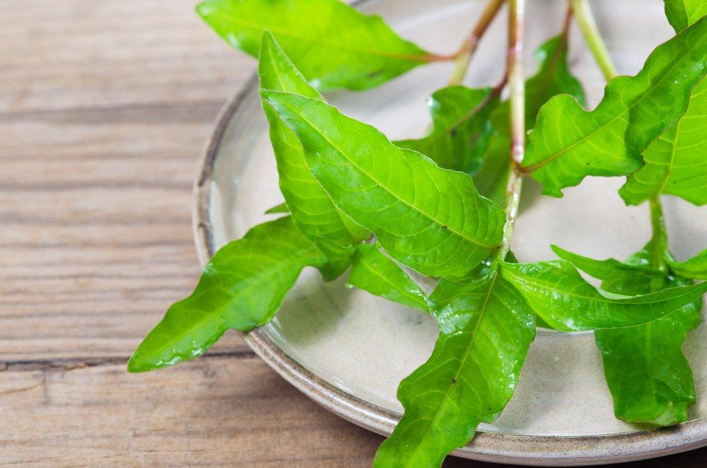 Photo of L'erba pepe è una pianta aromatica dall'odore acre da usare anche in cucina