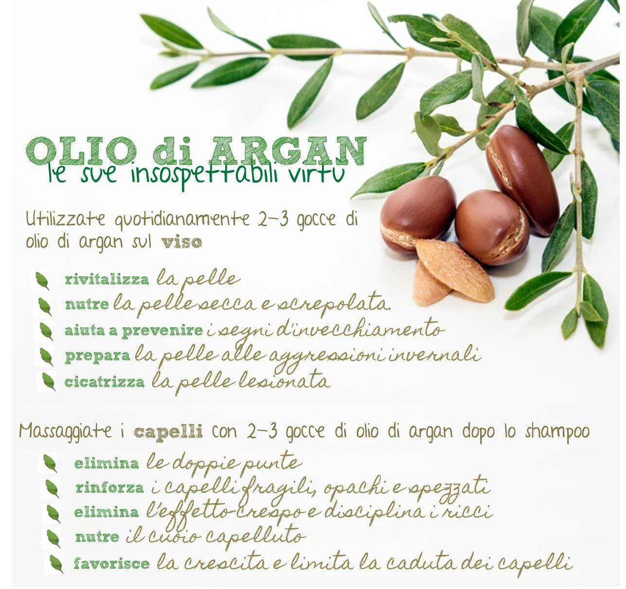 Photo of Olio di argan: proprietà e benefici per capelli e in cosmetica