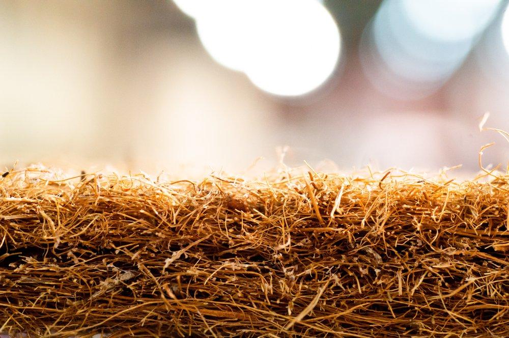 Photo of Fibra di cocco: dalla noce di cocco, una fibra vegetale per eco-tessuti e non solo
