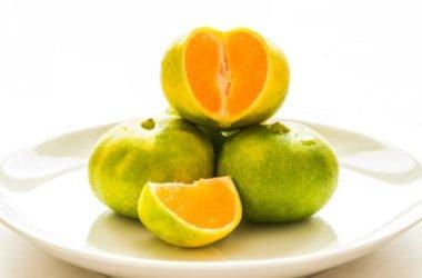 Un po' pompelmo, un po' mandarino: scopriamo il Mapo, un agrume tutto da conoscere