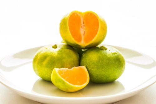 Photo of Un po' pompelmo, un po' mandarino: scopriamo il Mapo, un agrume tutto da conoscere