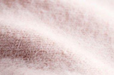 Quello che c'è da sapere sull'angora, una lana pregiata dalla storia controversa