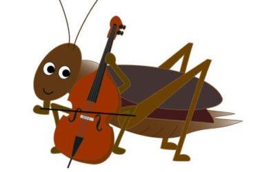 Il grillo, il simpatico insetto canterino