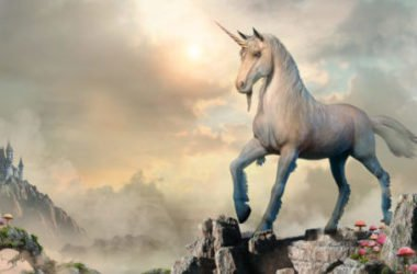 Volete sapere tutto sul mitico unicorno? Leggete qui…