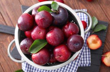 Prugne: proprietà benefiche, controindicazioni e ricette
