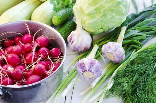 Photo of Tutto sulle verdure primaverili, un vero toccasana per la nostra salute