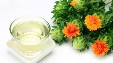Photo of L'olio di cartamo, un prodotto dalle proprietà terapeutiche e salutistiche interessanti