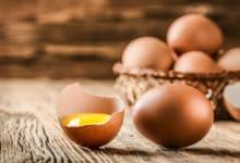 Photo of Guscio d'uovo: una fonte naturale di calcio per organismo e per la terra