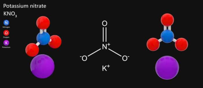 salnitro o nitrato di potassio