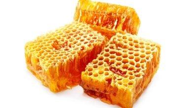 Photo of Guida alle proprietà ed ai benefici per la salute della cera d'api