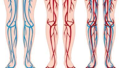 Photo of Rimedi naturali per la circolazione del sangue: tutti i rimedi per restare in salute