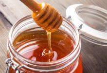 Photo of Miele millefiori: proprietà benefiche ed usi in cucina