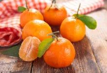Photo of Le clementine sono un agrume dal sapore dolce e polpa senza semi, ibrido tra mandarino e arancio amaro