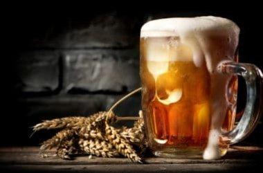 Qual'e la differenza della birra biologica dalla tradizionale e dove trovare le migliori online