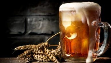 Photo of Qual'e la differenza della birra biologica dalla tradizionale e dove trovare le migliori online