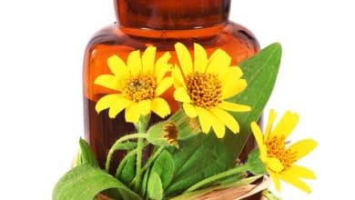 Photo of Guida pratica all'olio di arnica per scoprire come usare questo efficace rimedio naturale