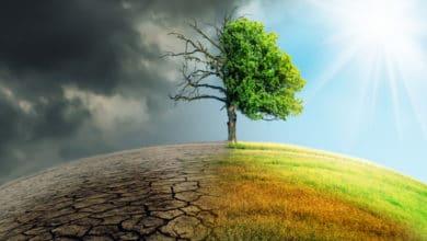 Photo of Cambiamenti climatici: bisogna cambiare velocemente il nostro stile di vita