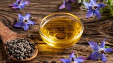 Photo of Olio di borragine, alleato naturale delle donne e della salute