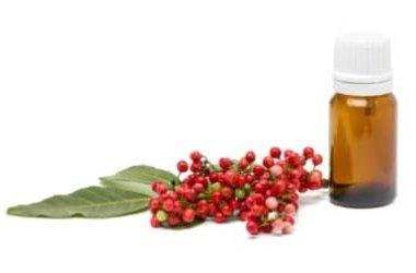 Olio di lentisco: profumo di Mediterraneo, beneficio per la pelle