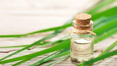 Photo of Olio essenziale di citronella rimedio naturale contro le zanzare