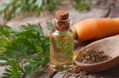 Guida all'olio di carota, cicatrizzante e protettivo di pelle e capelli