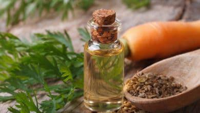 Photo of Guida all'olio di carota, cicatrizzante e protettivo di pelle e capelli
