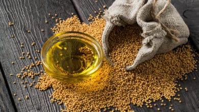 Photo of Olio di senape, un antico rimedio ayurvedico dalle molteplici proprietà