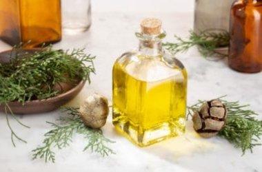 Guida pratica all'olio essenziale di cipresso ed alle sue proprietà terapeutiche
