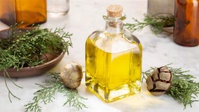 Photo of Guida pratica all'olio essenziale di cipresso ed alle sue proprietà terapeutiche