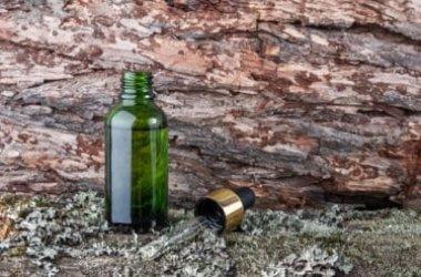 Quello che c'è da sapere sull'olio essenziale di Niaouli, un prodotto ricco di proprietà benefiche