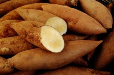 Yacon: la carota dolce che è un superfood