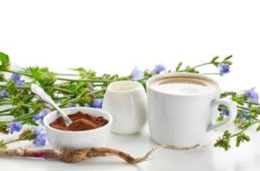 Scoprite il caffè di cicoria, un'alternativa al classico caffè senza effetti stimolanti