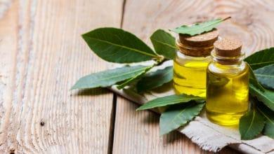 Photo of Pregi e utilizzi dell'olio essenziale di alloro, un altro olio essenziale dalle proprietà notevoli