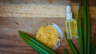 Photo of Cera vegetale, questa sconosciuta: un prodotto naturale tutto da scoprire