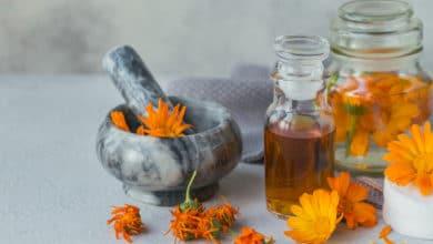 Photo of Olio di calendula: rinfrescante, lenitivo e cicatrizzante, è un ottimo alleato della nostra pelle