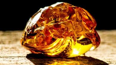 Photo of Alla scoperta dell'ambra, la resina che impreziosisce anelli e collane