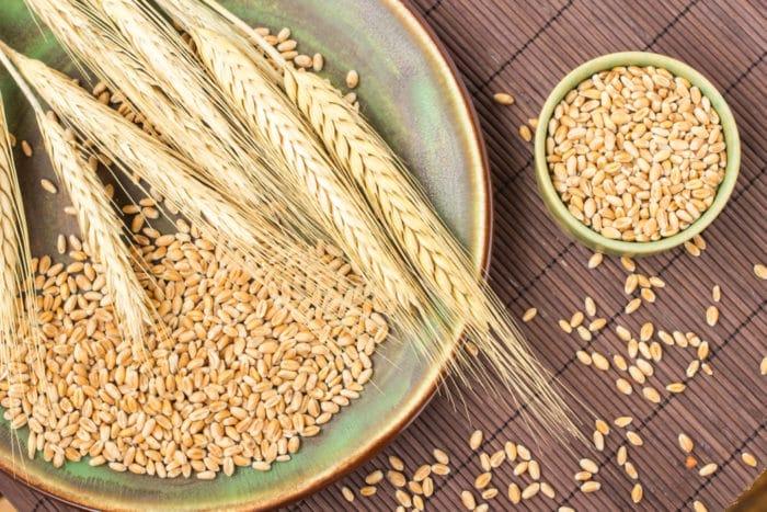 farina di grano duro