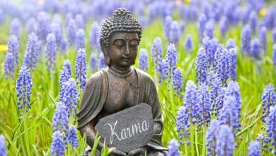 Photo of Il Karma: la legge di causa-effetto, fondamentale nella religione induista e nel buddhismo