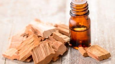 Photo of Olio essenziale di sandalo, intenso profumo del legno d'Oriente