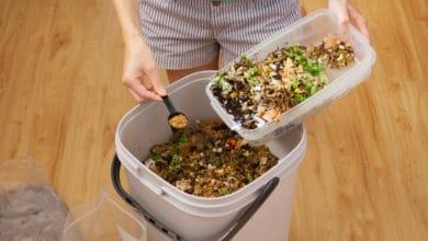 Photo of Scopriamo il Bokashi, un metodo di compostaggio che arriva dal Giappone