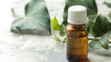 olio essenziale di edera
